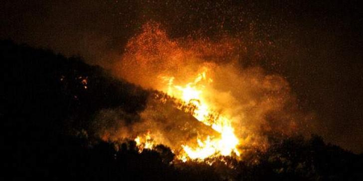 Σοφικό Κορινθίας : Σε εξέλιξη μεγάλη δασική πυρκαγιά - Στην παραλία διέφυγαν οι κάτοικοι τριών οικισμών | tanea.gr