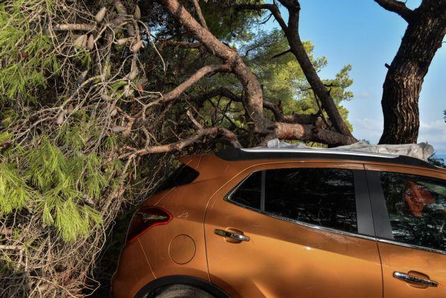 Κακοκαιρία : Καταστροφές, πλημμυρισμένοι δρόμοι και πτώσεις δέντρων   tanea.gr