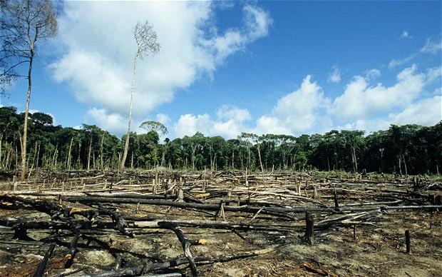 Ευρωπαϊκή Πράσινη Συμφωνία : Μια κακή συμφωνία για τον πλανήτη;   tanea.gr