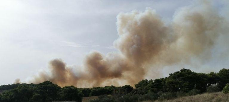 Πυρκαγιά στη Ζάκυνθο: Ενισχύονται οι πυροσβεστικές δυνάμεις - Ισχυροί άνεμοι στην περιοχή | tanea.gr