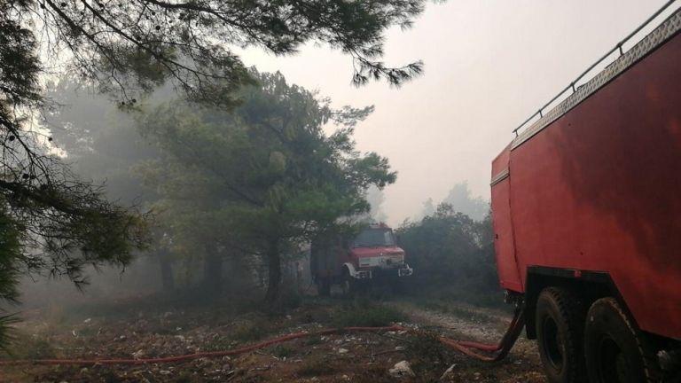 Πυρκαγιά στη Ζάκυνθο: Εσπευσμένα στην περιοχή ο αρχηγός της Πυροσβεστικής - Ισχυροί άνεμοι | tanea.gr