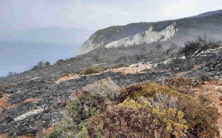 Ζάκυνθος: Οριοθετήθηκε η φωτιά – Καμένη γη πάνω από το διάσημο Ναυάγιο   tanea.gr