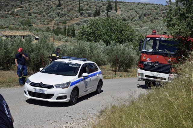 Ρόδος : Φωτιά καίει δασική έκταση κοντά στον Ασκληπιό | tanea.gr