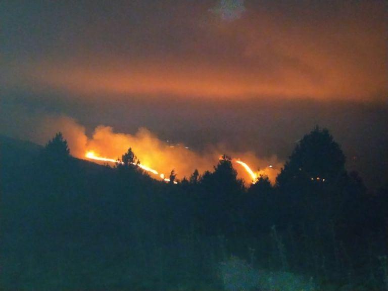Ολονύχτια μάχη με τις φλόγες στον Άγιο Πέτρο Κυνουρίας | tanea.gr
