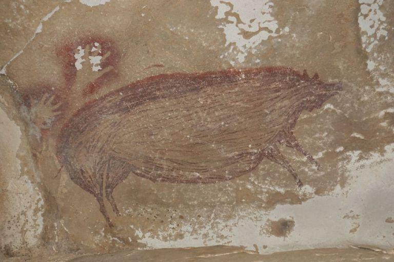 Στην Ινδονησία ανακαλύφθηκε η αρχαιότερη σπηλαιογραφία που εικονίζει ζώο | tanea.gr