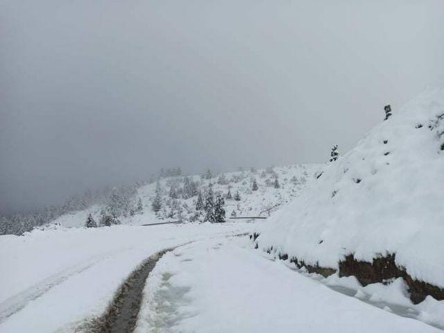 Στην «κατάψυξη» και την Κυριακή η χώρα – Χιονοπτώσεις και… πολικές θερμοκρασίες   tanea.gr
