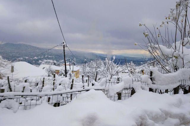 Σε χαμηλά επίπεδα η χιονοκάλυψη στην Ελλάδα για δεύτερο χειμώνα [χάρτης] | tanea.gr