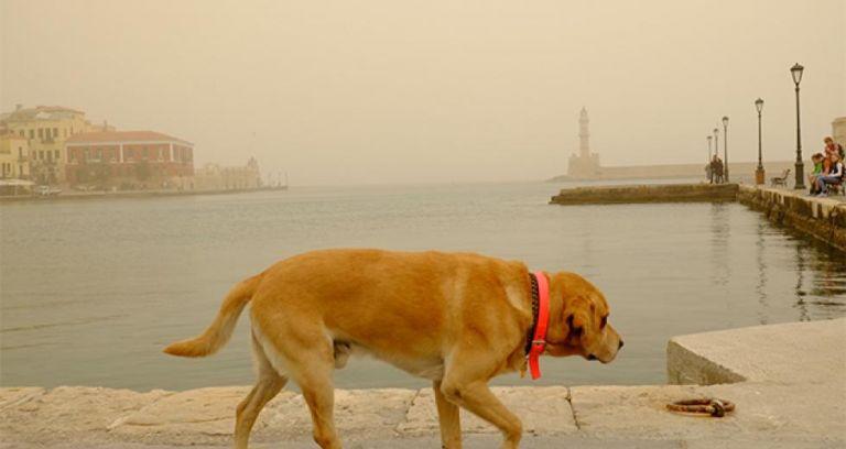 Σκόνη και πολύ υψηλές θερμοκρασίες – Άγγιξε τους 27 βαθμούς το θερμόμετρο στα Χανιά | tanea.gr