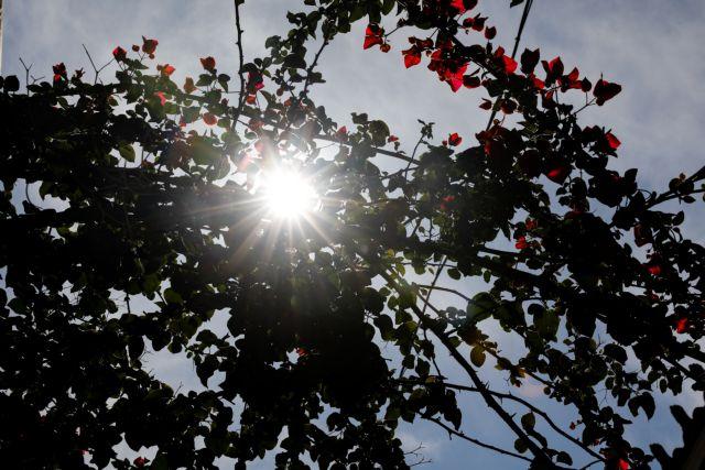 Λιακάδα και νέα άνοδος της θερμοκρασίας | tanea.gr