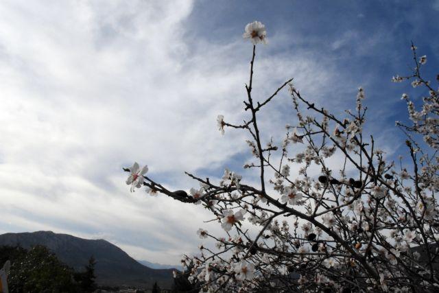 O χειμώνας είναι ακόμη εδώ - Πότε έρχεται νέα κακοκαιρία | tanea.gr