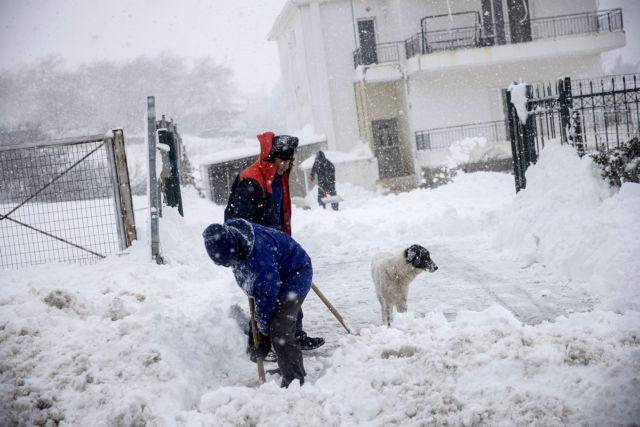 Ποια σχολεία θα παραμείνουν κλειστά την Τρίτη λόγω του χιονιά | tanea.gr