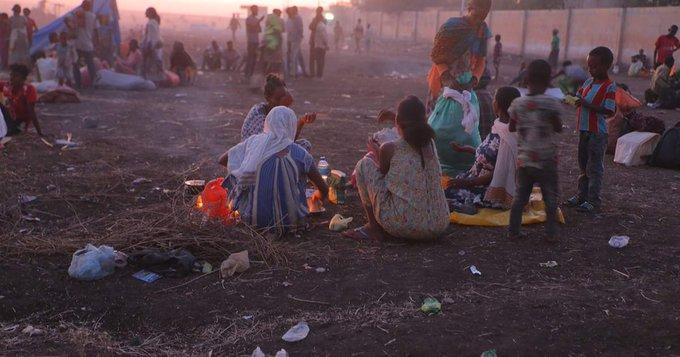 Αιθιοπία : Νέες σοκαριστικές καταγγελίες για το Τιγκράι – Σφαγιάστηκαν πάνω από 52.000 άμαχοι | tanea.gr