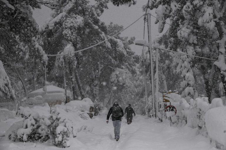 Μήδεια : Έβγαλαν τα τρόφιμα στο χιόνι για μην χαλάσουν   tanea.gr