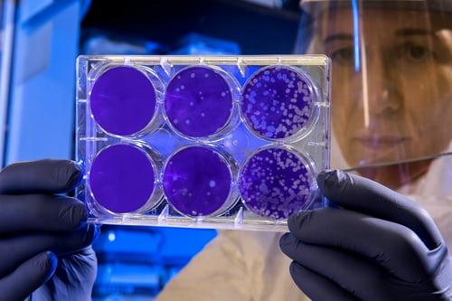 Επαναστατικό επιστημονικό επίτευγμα:  Μοντέλο ανθρώπινου εμβρύου από… εργαστήριο   tanea.gr