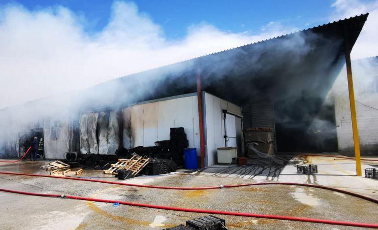 Πυρκαγιά σε συσκευαστήριο στο Παναρίτι Αργολίδας | tanea.gr