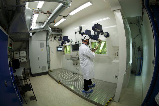 Επιστήμονες δημιούργησαν χιμαιρικά έμβρυα από άνθρωπο και… μαϊμού | tanea.gr
