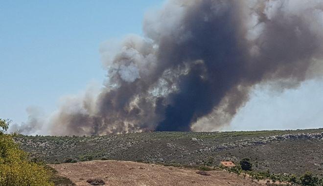 Φωτιά στο Λαύριο – Μεγάλη επιχείρηση της Πυροσβεστικής | tanea.gr