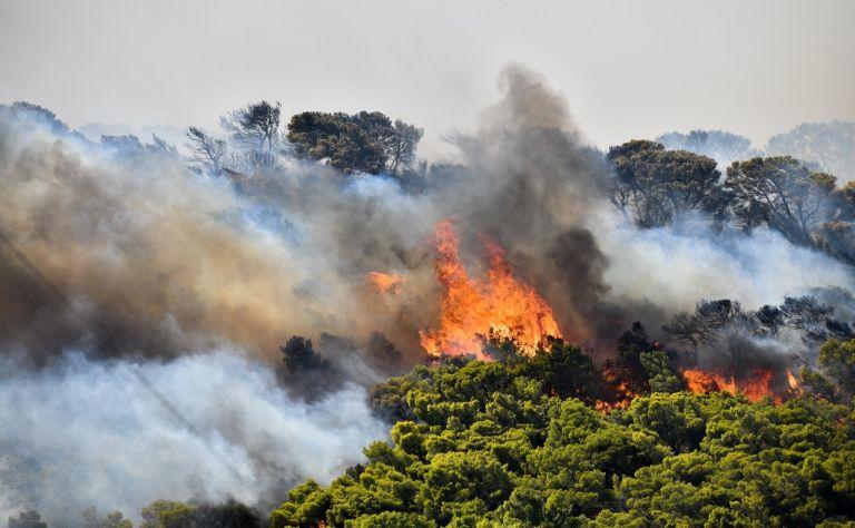 Φωτιά στη Σάμο: Δίνουν μάχη με τις φλόγες οι πυροσβέστες και οι εθελοντές | tanea.gr