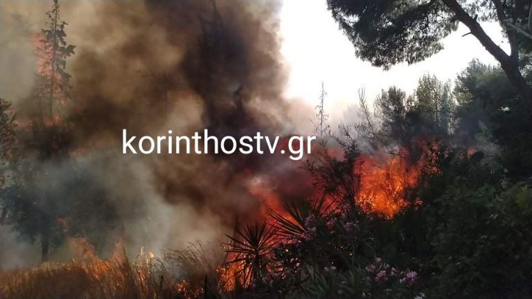Συναγερμός στην Πυροσβεστική – Μεγάλη φωτιά στα Ίσθμια | tanea.gr