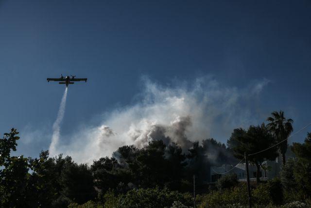 Χαρδαλιάς για φωτιά σε Κορινθία και Αττική: Στάχτη πάνω από 40.000 στρέμματα δάσους – Καταστροφές σε σπίτια | tanea.gr