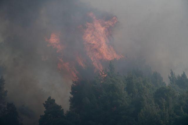 Φωτιά στην Κορινθία: Εκτακτη ενημέρωση από τον Χαρδαλιά στις 9:30 | tanea.gr