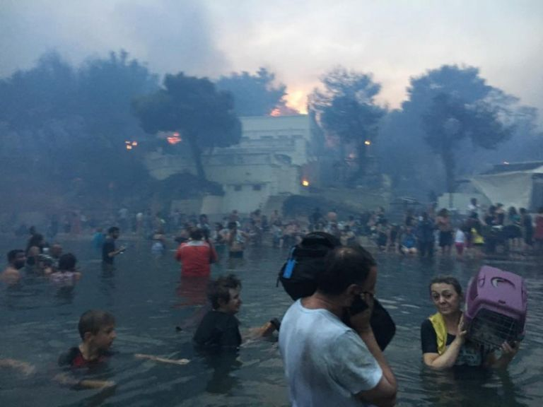 Πυρκαγιά στο Μάτι: Την αποπομπή του Αρχηγού της Πυροσβεστικής ζητούν οι συγγενείς των θυμάτων   tanea.gr