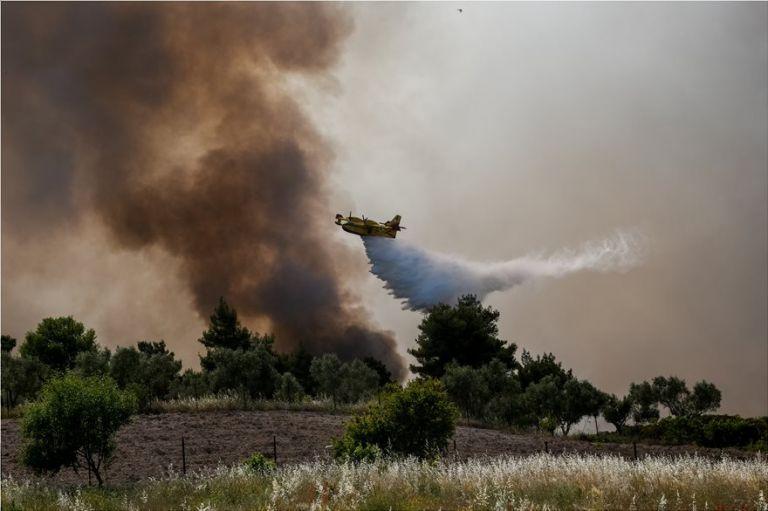 Φωτιά: Μάχη απέναντι σε συνεχείς αναζωπυρώσεις - 55.000 στρέμματα γης και δεκάδες σπίτια έγιναν στάχτη   tanea.gr