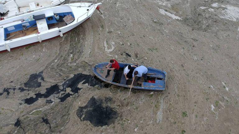 Τουρκία: Μυστηριώδης γλίτσα... πνίγει τη θάλασσα του Μαρμαρά - Κινδυνεύει το Αιγαίο;   tanea.gr