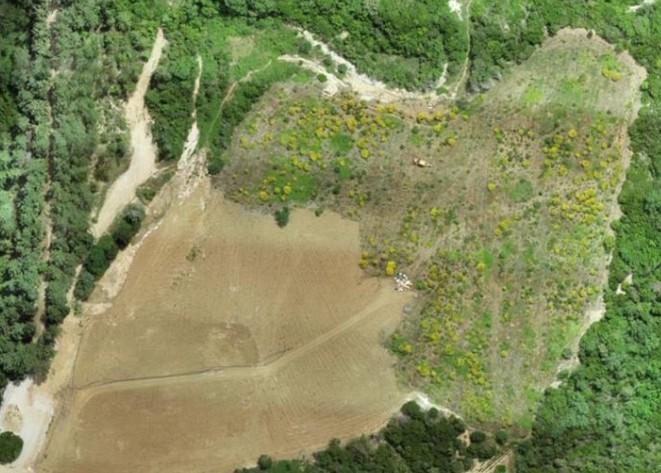 Ελληνικός Χρυσός: Ένα σύνθετο έργο περιβαλλοντικής αποκατάστασης μεταμορφώνει τη Χαλκιδική   tanea.gr