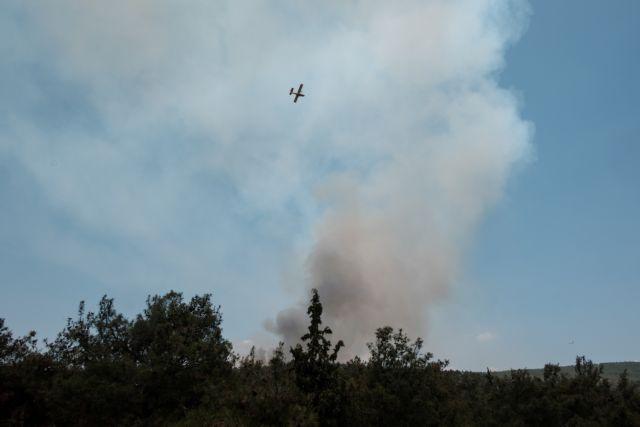 Φωτιά στην Εύβοια: Υπό έλεγχο το πύρινο μέτωπο | tanea.gr