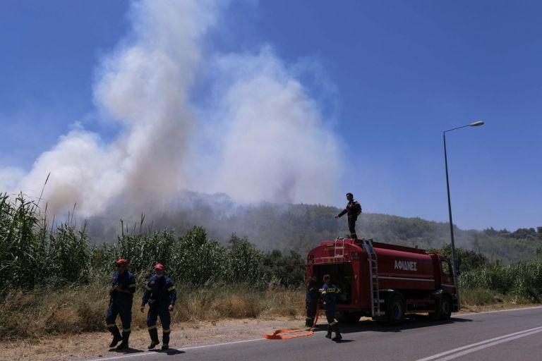 Χαρδαλιάς: «Ακόμα μια δύσκολη μέρα» – 51 πυρκαγιές σήμερα   tanea.gr