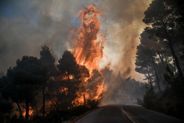 Μαίνεται η πυρκαγιά στο Θύριο Αιτωλοακαρνανίας | tanea.gr