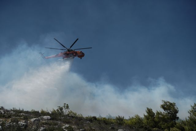 Υπό μερικό έλεγχο η φωτιά στην Κηφισιά   tanea.gr
