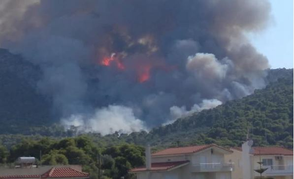 Περιορίστηκε το μέτωπο της φωτιάς στην Κορινθία | tanea.gr
