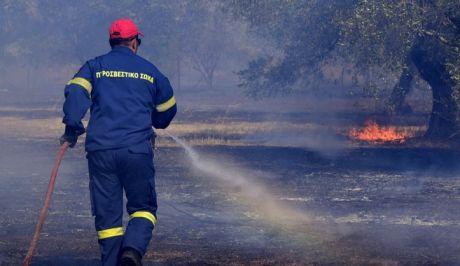 Πυρκαγιές: Μεγάλος ο κίνδυνος για φωτιά σήμερα – Ποιες περιοχές είναι στην κατηγορία 4 | tanea.gr