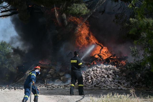 Φωτιά στη Μονεμβασιά – Στη μάχη και εναέρια μέσα | tanea.gr