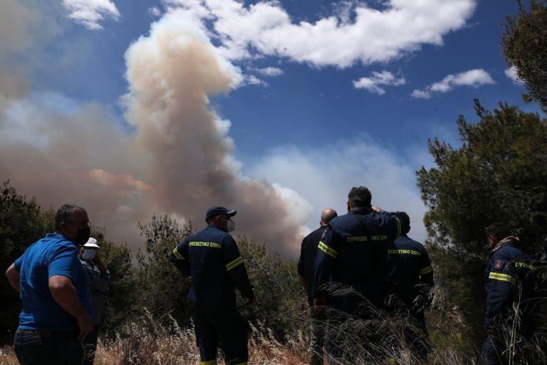 ΓΓΠΠ: Πολύ υψηλός κίνδυνος πυρκαγιάς την Πέμπτη – Προσοχή σε 5 Περιφέρειες   tanea.gr