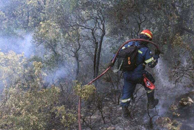 Μάχη με τις φλόγες στο Καλέντζι Κορινθίας   tanea.gr