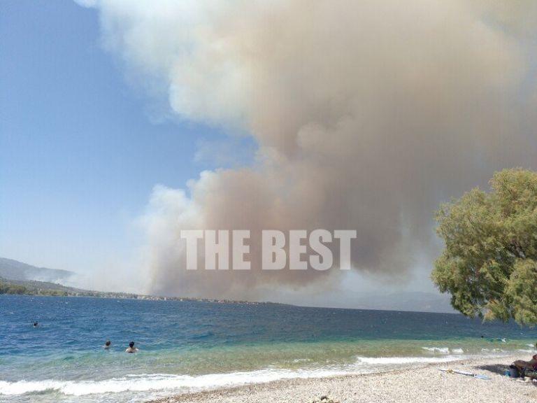Φωτιά στην Αχαΐα – Σκάφη του Λιμενικού μετέφεραν δεκάδες ανθρώπους   tanea.gr