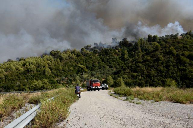 Φωτιά στην Αχαΐα – «Κάηκαν πάνω από 20 σπίτια στη Ζήρια» | tanea.gr