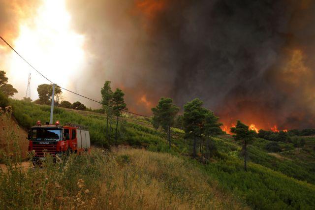 Φωτιά στην Καρδίτσα – Υπό έλεγχο το μέτωπο   tanea.gr
