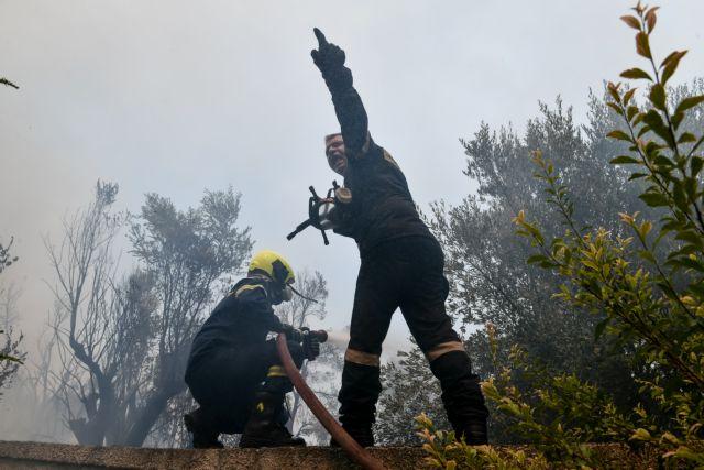 Φωτιές στην Αττική – Νέα πυρκαγιά κοντά στο Σούνιο   tanea.gr