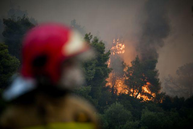 Καλύτερη εικόνα από την φωτιά στην Κάρυστο – Σώθηκε το Μαρμάρι  χάρη στα εναέρια μέσα - Ζημιές σε σπίτια στον Κοκκίνη | tanea.gr