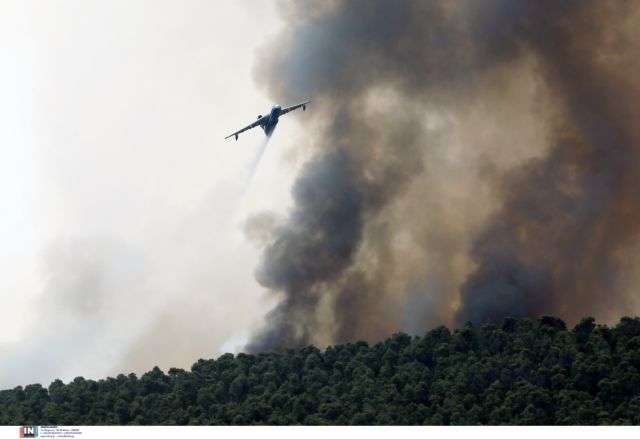 Βίλια – Δύο ακόμα μέρες θα καίει η φωτιά εκτιμά ο πρόεδρος των πυροσβεστών - Τι είπε για τα κρούσματα κοροναϊού στο σώμα   tanea.gr