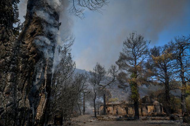 Φωτιές – Πόσα στρέμματα έχουν καεί σε Βίλια και Λαυρεωτική | tanea.gr