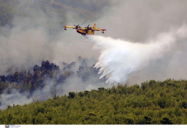 Βίλια – Ανεξέλεγκτο το πύρινο μέτωπο λόγω των δυνατών ανέμων - Στα 400 μέτρα από τα σπίτια οι φλόγες | tanea.gr