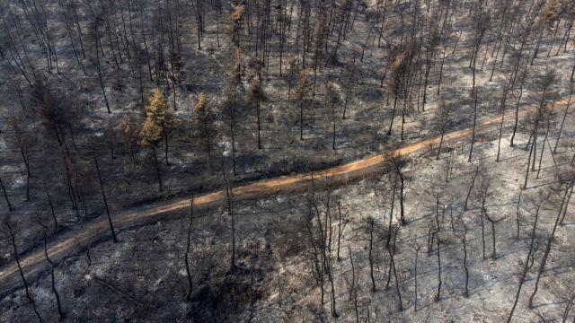 Εύβοια – Πόσα στρέμματα έχουν καεί σε Λίμνη, Μαντούδι και Αγία Άννα   tanea.gr