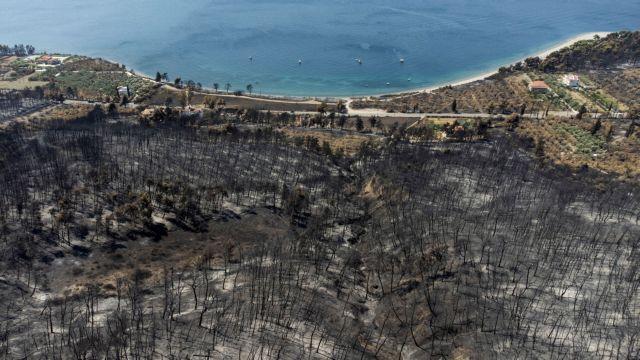 Η πρόληψη είναι το κλειδί για τις πυρκαγιές   tanea.gr