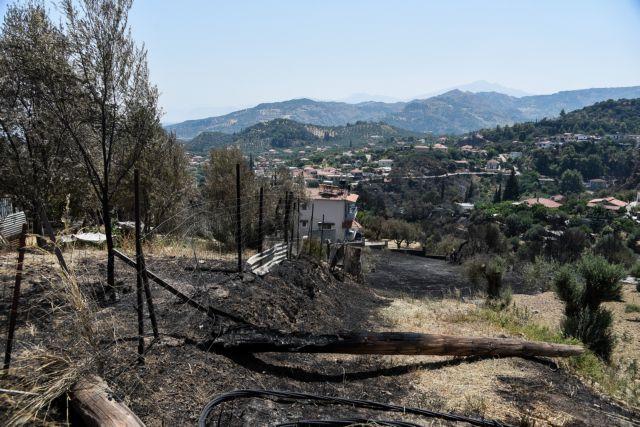 Αχαΐα - Σε κατάσταση έκτακτης ανάγκης οι πυρόπληκτες περιοχές των Δήμων Πατρέων κι Αιγιάλειας   tanea.gr