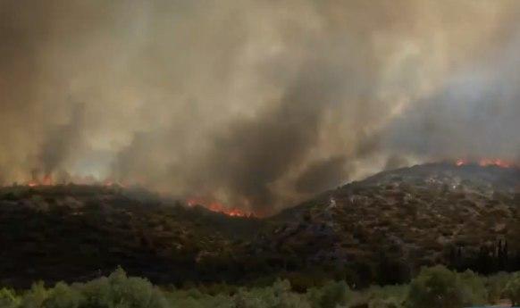 Φωτιά στην Κερατέα – Εκκενώνεται και η Συντερίνα μετά το Μαρκάτι – Νέο μήνυμα από το 112   tanea.gr